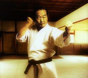 shotokan karate kata nakayama